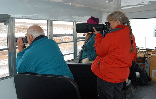 Photography enthusiasts onboard the Tundra Buggy