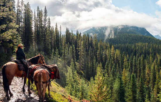 Banff Wilderness Retreat by Horseback