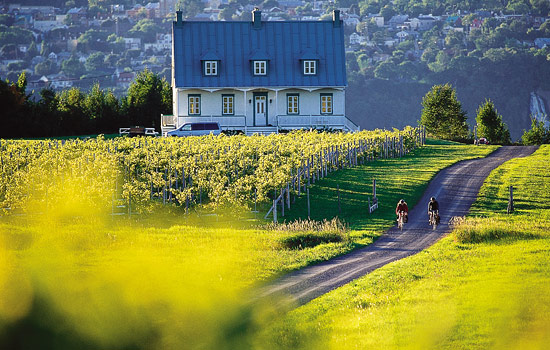 Two bikers pass a farmhouse in the green Quebec counrtyside