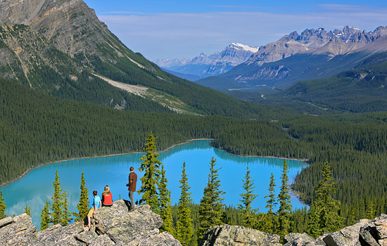 Peyto Lake viewpoint in the Canadian Rockies