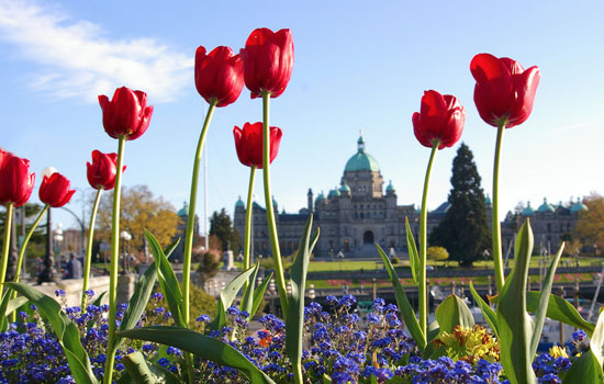 The charming city of Victoria, Vancouver Island