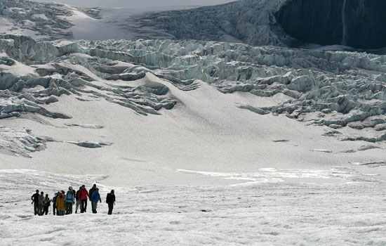 Explore glaciers on the Columbia Icefields