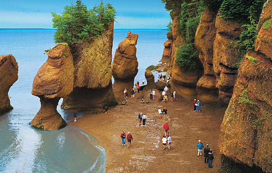 Hopewell Rocks at the Hopewell Cape