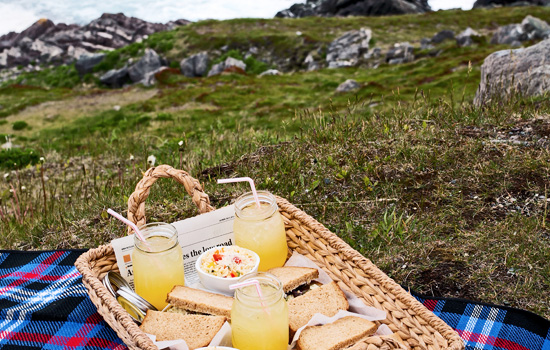 Ferryland Lighthouse picnic lunch