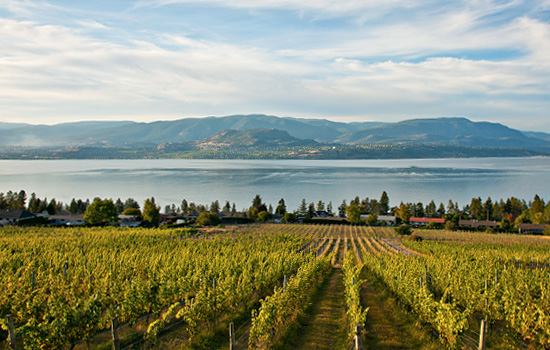 Kelowna winery and lakes