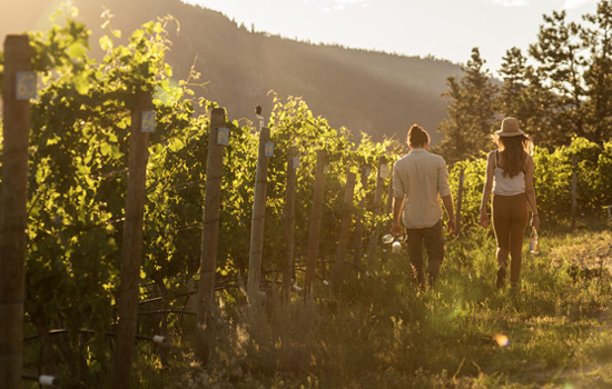 Southern Okanagan winery