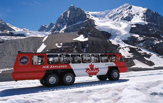 The 'Ice Explorer' bus takes a group tour to see glaciers on the Icefield Parkway